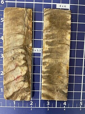 """Rough Textured 1-pair (Real RAM horn )knife Scales 1 1/2""""x 5"""" X1/4"""" Muilty Color"""