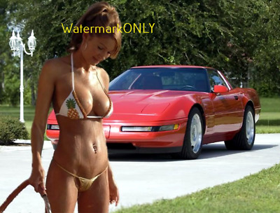 "SUPER ULTRA HOT ""BUSTY"" Car Babe & Chevy Corvette ""Pin-UP"" PHOTO! #(345db)"
