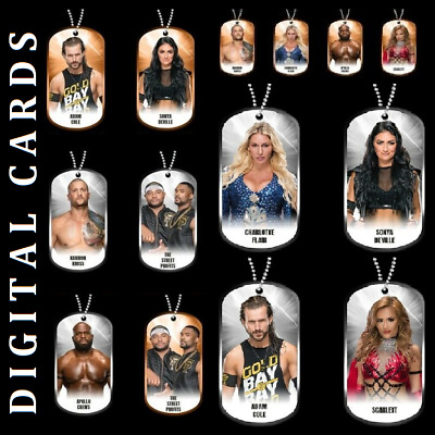 Topps Wwe Slam Dog Tags 2020 Drop 1 Silver & Bronze [Set 14 Cards]