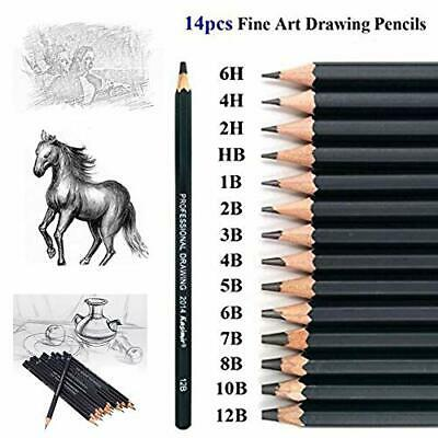 Drawing Sketch Pencil Set 14pcs Sketching Pencils 12B 10B 8B 7B 6B 5B 4B 3B...