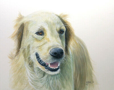Frase Original Dog Painting Golden Retriever Art Realism Duck Stamp Artist A/B