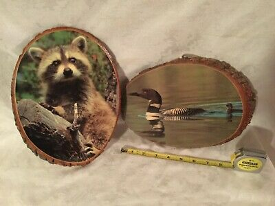 2 Vintage Retro Shellacked Wood tree  with raccoon, duck and baby.