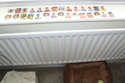 Panini Fifa World Cup Stickers From Brazil 2014 Total 29 All Different
