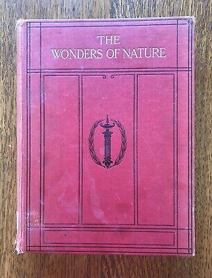 The Wonders Of Nature Vintage Book For Boys And Girls Llangefni