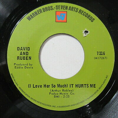 "David & Ruben 7"" 45 Record I Love Her So Much It Hurts Me Northern Soul WB RARE"