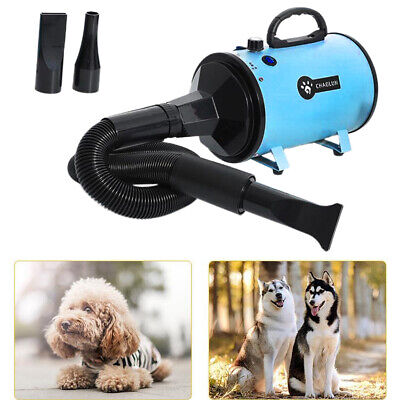 Pet Dryer Blower Regolabile Cane Grooming Asciugatrice Peli di Animali Domestici