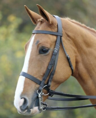 Size Cob BNWT Shires Aviemore Comfort Fit Bridle Havana With Reins
