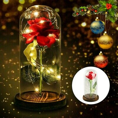 Beauty And The Beast Enchanted Rose In Glass Dome LED Light USB Lamp Decor Gift