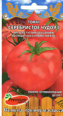 """Seeds Bush Pepper Chili /""""Small Miracle/"""" Bonsai Seeds Russian Vegetables Garden"""