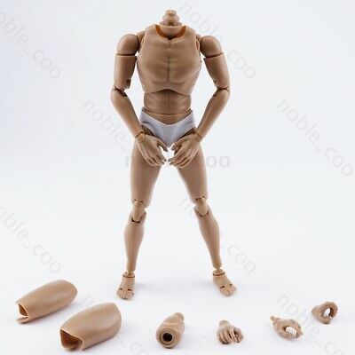 """WorldBox 1//6 Scale Narrow Shoulder Male Body 12/"""" Action Figure Doll Model AT011"""