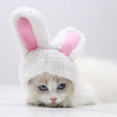 Dog Pet Bunny Rabbit Ears Hat For Cat Small Puppy Kitten Party Costume Outfit