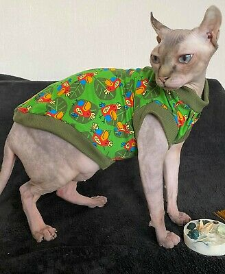 Sphynx cat clothing, cat jumper, Condition is  handmade.