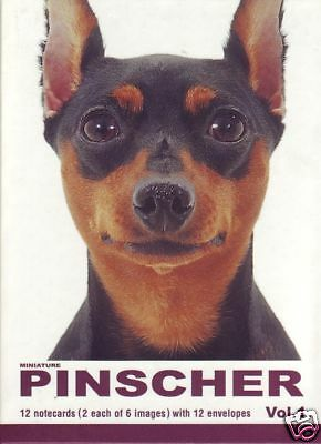 12 Boxed Note Cards Notecards 6 Assorted Miniature Pinscher