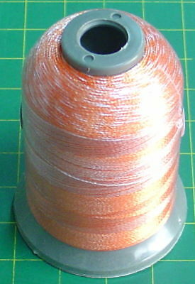 Variegated Machine Embroidery Thread 1,000 Meter No 9717