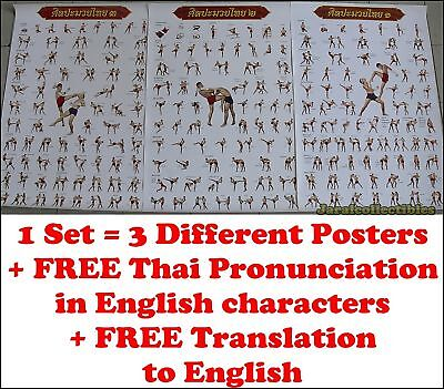 Muay Thai Kick Boxing MMA Collection Gift Training Fight Martial Art 3 Poster
