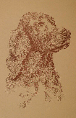 Irish Setter Dog Art Portrait Print #40 Kline adds dog name free. WORD DRAWING