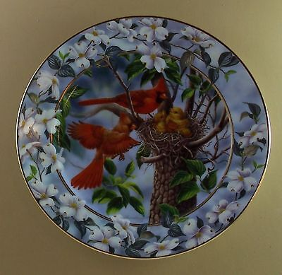 CARDINAL Plate A FAMILY FEAST Signs of Spring Bird