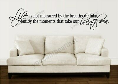 Inspirational and Motivational Wall Decal 10x22 M1047 Life Is Not Measured By..
