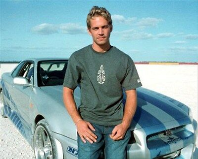 "PAUL WALKER Poster Print 24x20"" great image 271838"