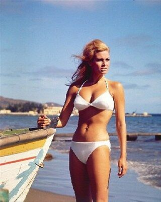 """RAQUEL WELCH Poster Print 24x20"""" cool image 256308"""