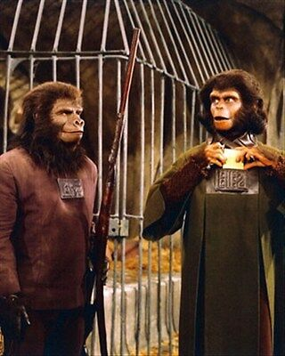 """PLANET OF THE APES Poster Print 24x20"""" classic photo 266486"""