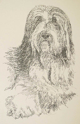 Bearded Collie Dog Art Portrait Print #39 Kline adds dog name free. Word Drawing