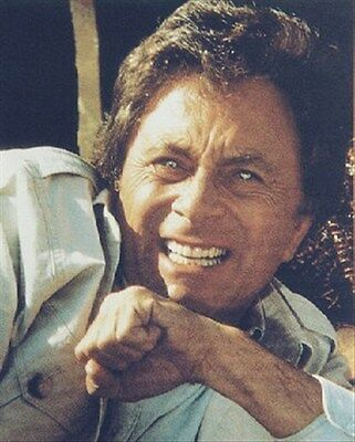 BILL BIXBY AS DR. DAVID BRUCE BANNER FROM TH 8x10 Photo fine pic 248501
