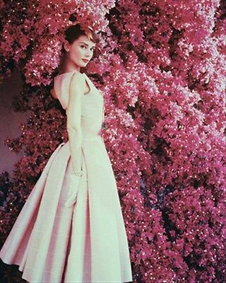AUDREY HEPBURN 8x10 Photo beautiful pic 234605
