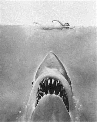 JAWS 8x10 Photo wonderful image 177948