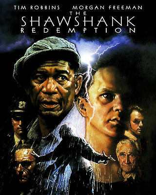The Shawshank Redemption Movie Poster, 8x10 Color Photo