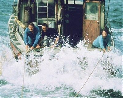 "JAWS MOVIE PHOTO Poster Print 24x20"" nice photo 269122"