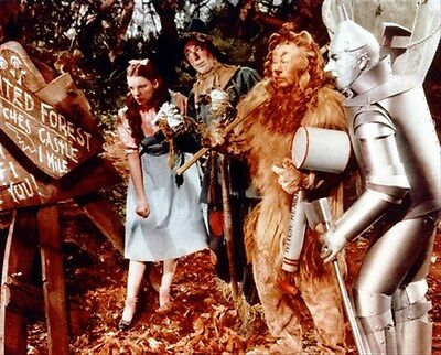 """THE WIZARD OF OZ MOVIE PHOTO Poster Print 24x20"""" wonderful pic 257730"""