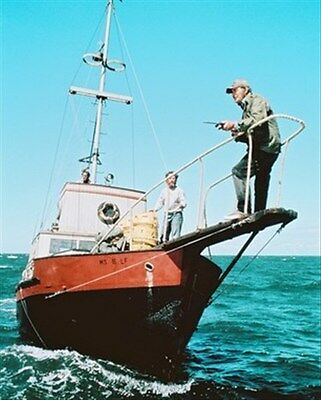 """JAWS MOVIE PHOTO Poster Print 24x20"""" great for fans 247790"""
