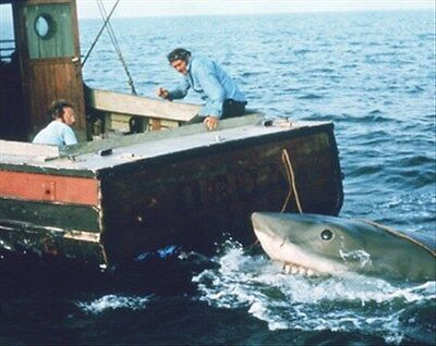JAWS MOVIE PHOTO 8x10 Photo great gift idea 269131