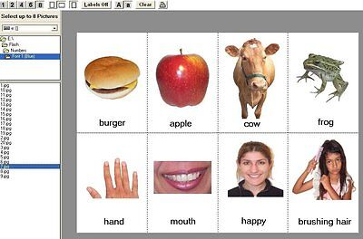Teaching Kids All Ages Body Parts/Food/Animals/Numbers Pictures/Flash Cards CD