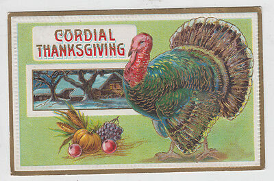 Turkey with Gold Edged Feathers Thanksgiving Postcard
