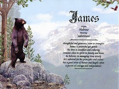 """Bears"" Name Meaning Print Personalized (Animals)"