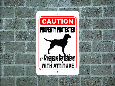 Property protected by Chesapeake Bay Retriever dog with attitude aluminum sign