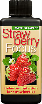Strawberry Focus Plant Food - Nutrients for Strawberry Pineberry etc ..100ml