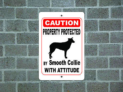 Property protected by Smooth Collie dog with attitude metal aluminum sign