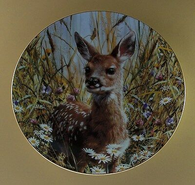 Our Woodland Friends A JUMP INTO LIFE:  SPRING FAWN Plate Deer #7 Seventh Issue