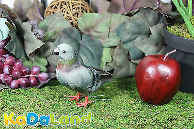 Feather Gray Pigeon Adorable Furry Animal Taxidermy Figurine plush Decor Cabin