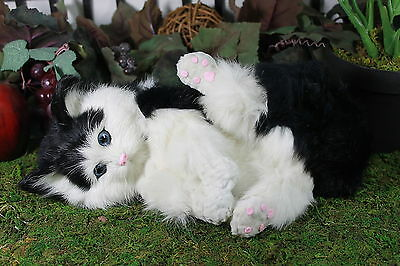 Black & White Cat Playing Post Adorable Furry Animal Taxidermy Figurine Kitty