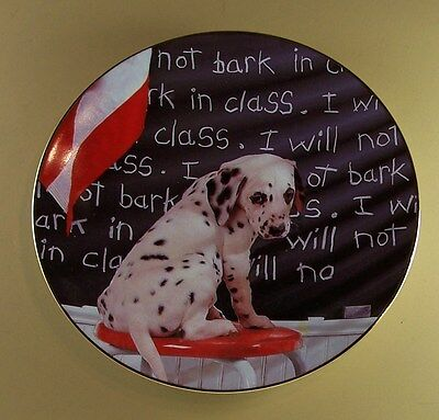 I WILL NOT BARK IN CLASS  Comical Dalmatians Plate Dog Puppy School Hamilton