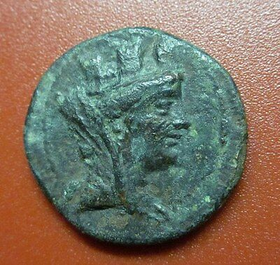 "Greek AIGEAI CILICIA 164-27 TYCHE HORSE BRONZE""""Rare Splendor"""" (RE7)"
