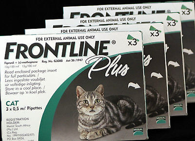 Merial Frontline Plus For cats 4x3 Packs, 12 months supply 1 year