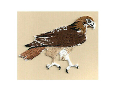 Hawk-Red Tailed  - Bird - Fully Embroidered Iron On Applique Patch