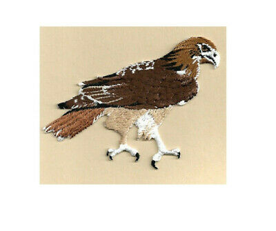 Hawk-Red Tailed Fully Embroidered Iron On Applique/Patch