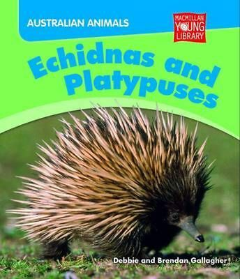 Australian Animals: Echidnas and Platypuses by Debbie Gallagher Hardcover Book