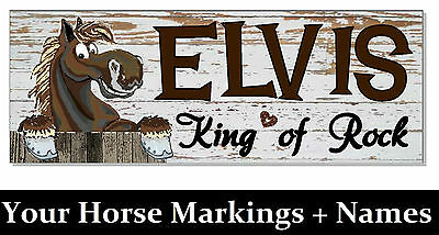 YOUR HORSE PONY DIGITAL PAINTED & NAME PLAQUE OUTDOOR Stable DOOR sign tack room